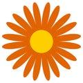 Classic flower clip-art. Simple orange daisy, flower icon, symbol Royalty Free Stock Photo