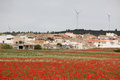 Classic rural spain red poppy field and small town with power generators Stock Photo