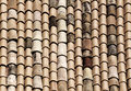 The classic tiles of the roofs of noto sicily a detailed view landscape cut Stock Image