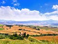 Classic tuscan landscape view over the fields of tuscany italy under blue skies Stock Photos