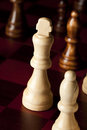 Classic Wooden Chessboard with Cheese Pieces Royalty Free Stock Photos