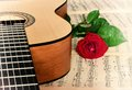 Classical guitar and rose. Royalty Free Stock Photo