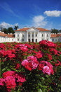 Classical palace Royalty Free Stock Photo