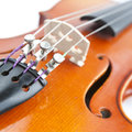 Classical violin close-up Royalty Free Stock Photo