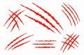 Claw vecror scratches