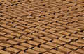 Clay bricks led to be dried construction material Stock Photo