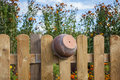 Clay pot on the fence hanging a wooden Royalty Free Stock Photography