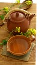 Clay teapot, cup of tea and flowers Royalty Free Stock Photo