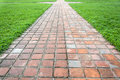 Clay tiles walkway and grass on the side Royalty Free Stock Image