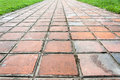 Clay tiles walkway and grass on the side Stock Photo