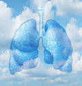 Clean air quality concept and healthy breathing in a pollution free environment represented by human lungs in a summer sky Royalty Free Stock Photos