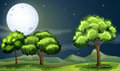 A clean and green forest under the bright fullmoon illustration of Royalty Free Stock Photography