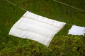 Clean laundry hanging to dry on line outdoor housework wet bedding the clothesline rural scene Stock Photo
