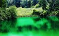 Clean mountain pond unpolluted reflective green waters of a in the mountains of northern virginia Stock Photos