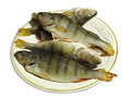 Clean perch prepared for frying on white Royalty Free Stock Images