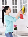 Cleaning the house smiling girl with microfiber cloth and spray Stock Photography