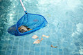 Cleaning swimming pool of fallen leaves with blue skimmer net Royalty Free Stock Photo