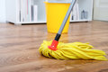 Cleaning tools on parquet Royalty Free Stock Photo