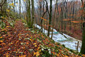 Clear stream and November foliage in the mountains Royalty Free Stock Photography