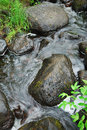 Clear stream running among wet rocks is and green plants Stock Photo