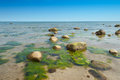 Clear water and rocks at the beach near bläsinge on the island oeland sweden Royalty Free Stock Photos