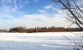 Clear winter day view of the river with traces of animals Stock Photography