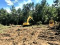 Clearing land and logging timber Royalty Free Stock Photo