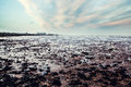 Cleethorpes lincolnshire Royalty Free Stock Photo