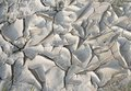 Clefty ground detail abstract dry fissured and Royalty Free Stock Image