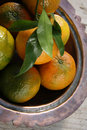 Clementines in a bowl Royalty Free Stock Images