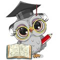 Clever owl with pencil, book and in graduation cap Royalty Free Stock Photo