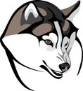 Clever wolf vector baring his head huskies Royalty Free Stock Photos