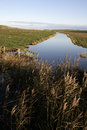 Cley marshes nature reserve norfolk Stock Images