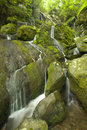 Cliff Branch Falls, Great Smoky Mtns NP, TN Royalty Free Stock Photo