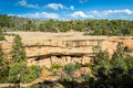 Cliff dwellings in mesa verde national parks co usa colorado Stock Image