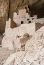 Cliff Palace ancient puebloan village of houses and dwellings in Mesa Verde National Park New Mexico USA Royalty Free Stock Photo