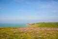 Cliffs at cap gris nez cote opale france north pas de calais Royalty Free Stock Photos
