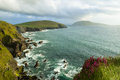 Cliffs on dingle peninsula the coastline at slea head ireland Stock Image