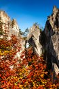 Cliffs draped in autumn leaves