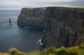 Cliffs of Moher with grass  in foreground, Ireland Stock Photos