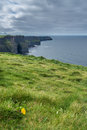 Cliffs of Moher Royalty Free Stock Photo