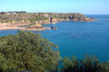 Cliffs and sea in the uk channel islands jersey coast showing vegitation Stock Image