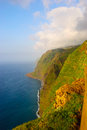 Cliffs, west coast of Madeira, Portugal Stock Images