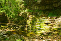 Clifton Gorge Ohio USA brook beside tree in forest Stock Photography