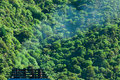 Climate gas pollution concept, smoke and forest Royalty Free Stock Image