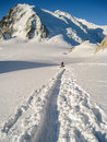 Climbers crossing the col du midi glacier in fresh snow making t tracks heading towards mont blanc de tacul Royalty Free Stock Images