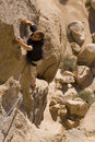 Climbing-joshua tree Stock Photo