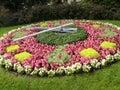 Clock flowers Royalty Free Stock Photo