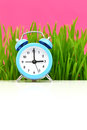Clock with grass and pink background puberty concept Royalty Free Stock Photos
