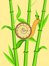 Clock snail on bamboo Royalty Free Stock Image